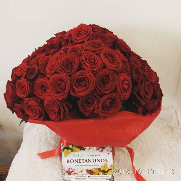 101 Red Roses Naomi Porta Nova