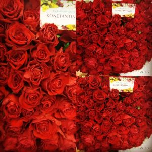 #luxury #Μια αγκαλιά λουλούδια #Flowershop_Anthodhmiourgies Konstantinos #delivery roses_Thessaloniki