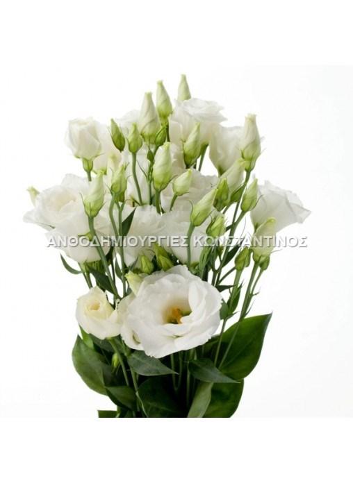 Λυσίανθος σε μεγάλη ποικίλια χρωμάτων! Όλα μας τα λουλούδια μπορείτε να τα βρείτε online! Ανθοπωλείο Ανθοδημιουργίες Τούμπα Θεσσαλονίκη
