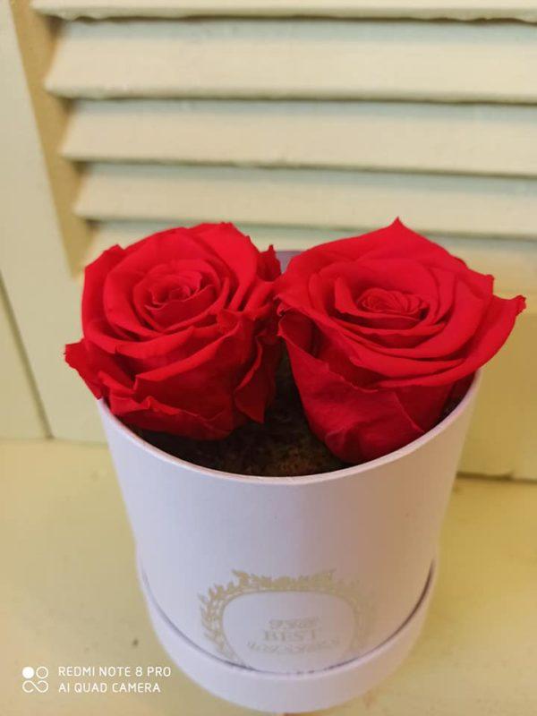 2 αιώνια τριαντάφυλλα σε κουτί