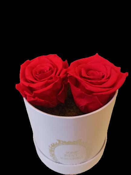 RED FOREVER ROSE | Online Ανθοπωλείο Ανθοδημιουργίες Τούμπα Θεσσαλονίκη