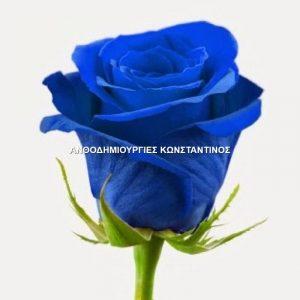 αυθημερον αποστολη μπλε τριανταφυλλα για την πολη της θεσσαλονικης