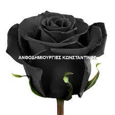 Μαύρο Τριαντάφυλλο σε σπάνιες ποικιλίες! Όλα μας τα λουλούδια μπορείτε να τα βρείτε online! Ανθοπωλείο Ανθοδημιουργίες Τούμπα Θεσσαλονίκη