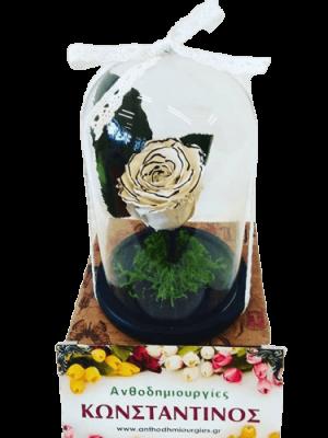 FOREVER ROSES BLACK & WHITE | Τριαντάφυλλο ανωτέρας ποιότητας και μακράς διάρκειας διακοσμημένο σε γυάλινο θόλο | Ανθοδημιουργίες Τούμπα Θεσσαλονίκης