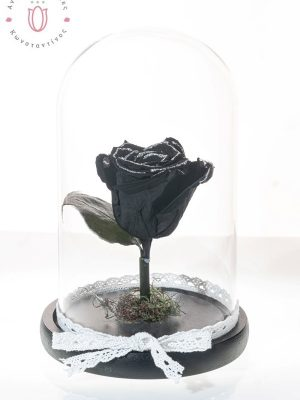 black rose with silver gold powder in bowl