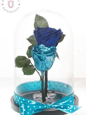 Υπέροχη σύνθεση από 2 διαλεγμένα αιώνια τριαντάφυλλα χρώματος μπλε και μεταλλικό μπλε διακοσμημένα με κρύσταλλα μέσα σε γυάλινο θόλο διαστάσεων 28χ15cm