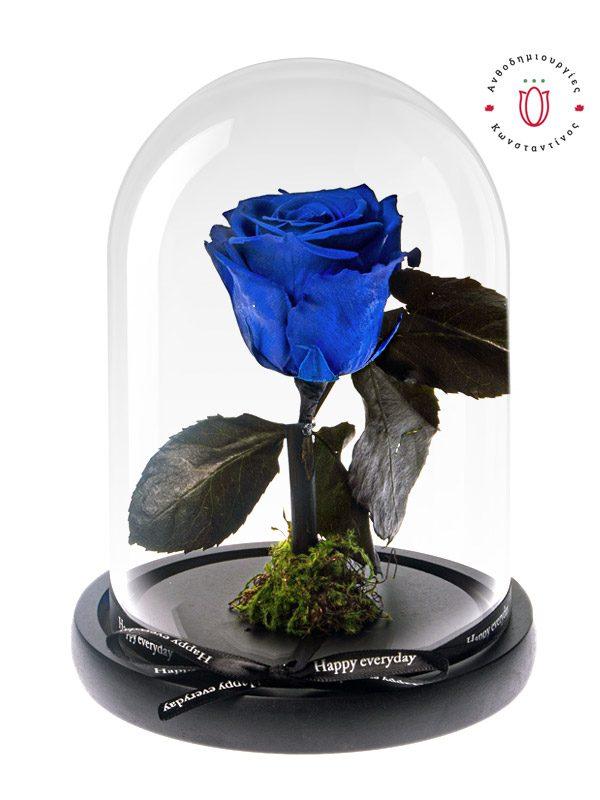 αιώνιο μπλε τριαντάφυλλο σε γυάλινο θόλο