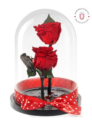 two-red-roseforever-glass