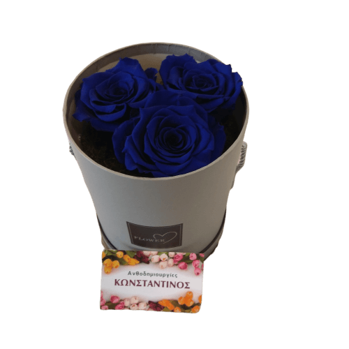 FOREVER ROSES BLUE IN A BOX