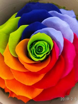 eternity roses rainbow delivery to thessaloniki