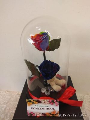 FOREVER BLUE AND RAINBOW ROSES
