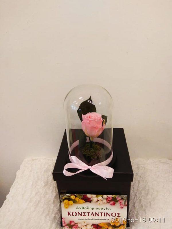 eternity roses pink | Forever Roses Ανθοπωλείο Ανθοδημιουργίες Τούμπα Θεσσαλονίκη