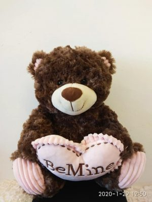TEDY BEAR BE MINE