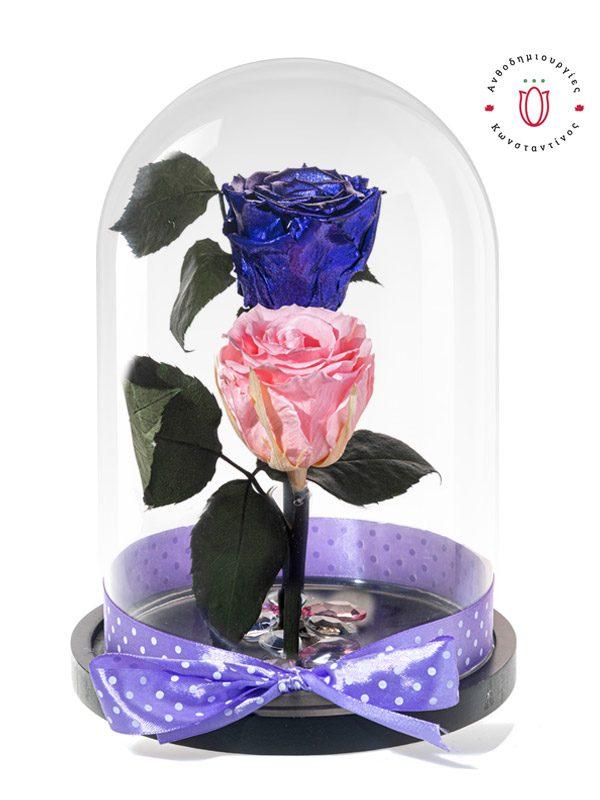 2 τριαντάφυλλα forever σε ροζ & μωβ χρώμα σε γυάλινη καμπάνα. Ανθοπωλείο Ανθοδημιουργίες Τούμπα Θεσσαλονίκη