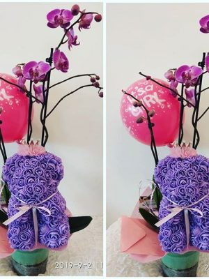 Luxury gift for a newborn. pink orchids in ceramic along with rosebear teddy bear