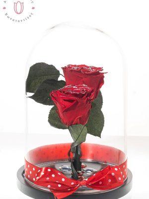 τριαντάφυλλα σε γυάλα που κρατάνε χρόνια
