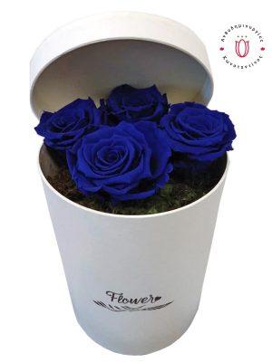 FOREVER ROSES BLUE IN A BOX Ανθοπωλείο Ανθοδημιουργίες Τούμπα Θεσσαλονίκη