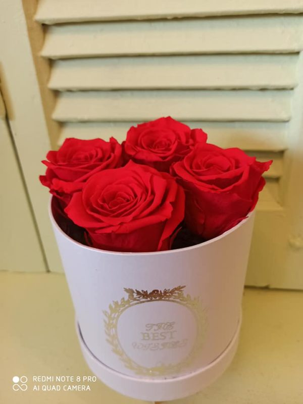 4 EVER ROSES RED IN A BOX