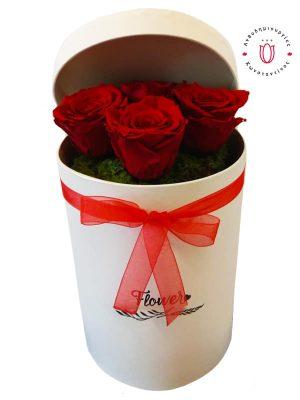 4 κόκκινα forever roses σε κουτί
