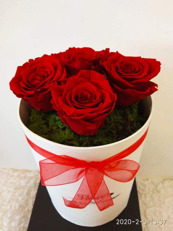 4 EVER ROSE RED IN A BOX