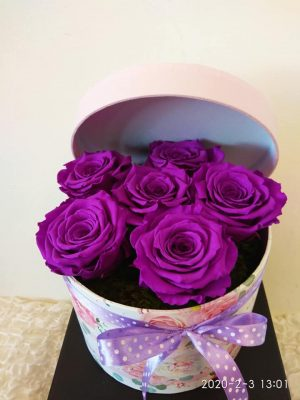 PURPLE FOREVER ROSES IN A BOX