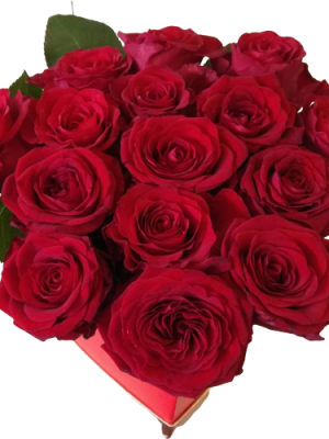 RED TRIANTAFYLLS IN CARDIAS BOX Thessaloniki | Online florist florist Toumba Thessaloniki