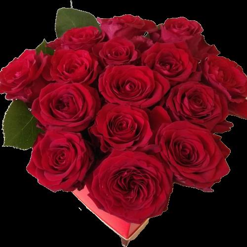 RED TRIANTAFYLLS IN CARDIAS BOX Thessaloniki | Online florist florist Toumba Thessaloniki