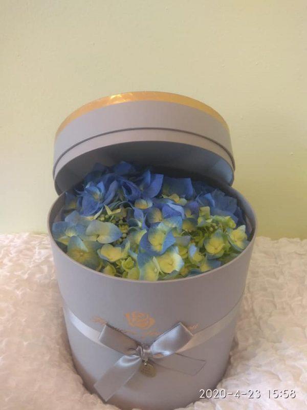 Μπλε Ορτανσίες σε κουτί, ιδανικό για δώρο! Αυθημερόν delivery στη Θεσσαλονίκη! Online ανθοπωλείο Ανθοδημιουργίες Τούμπα Θεσσαλονίκη.