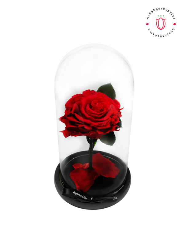 ETERNITY ROSES RED θεσσαλονίκη | Online Ανθοπωλείο Ανθοδημιουργίες Τούμπα Θεσσαλονίκη